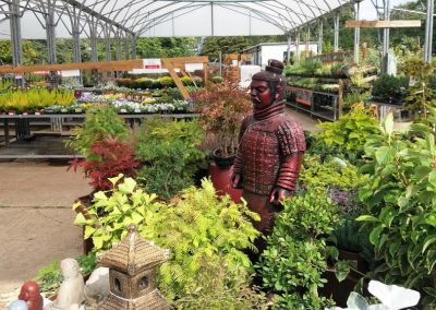 The Outdoor Plant Centre